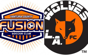 Ventura County Fusion LA Wolves
